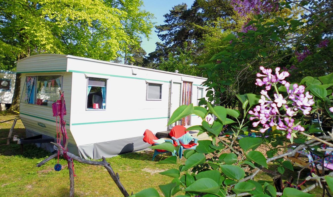 Camping Bakkum